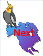 NACS Webring Next site logo